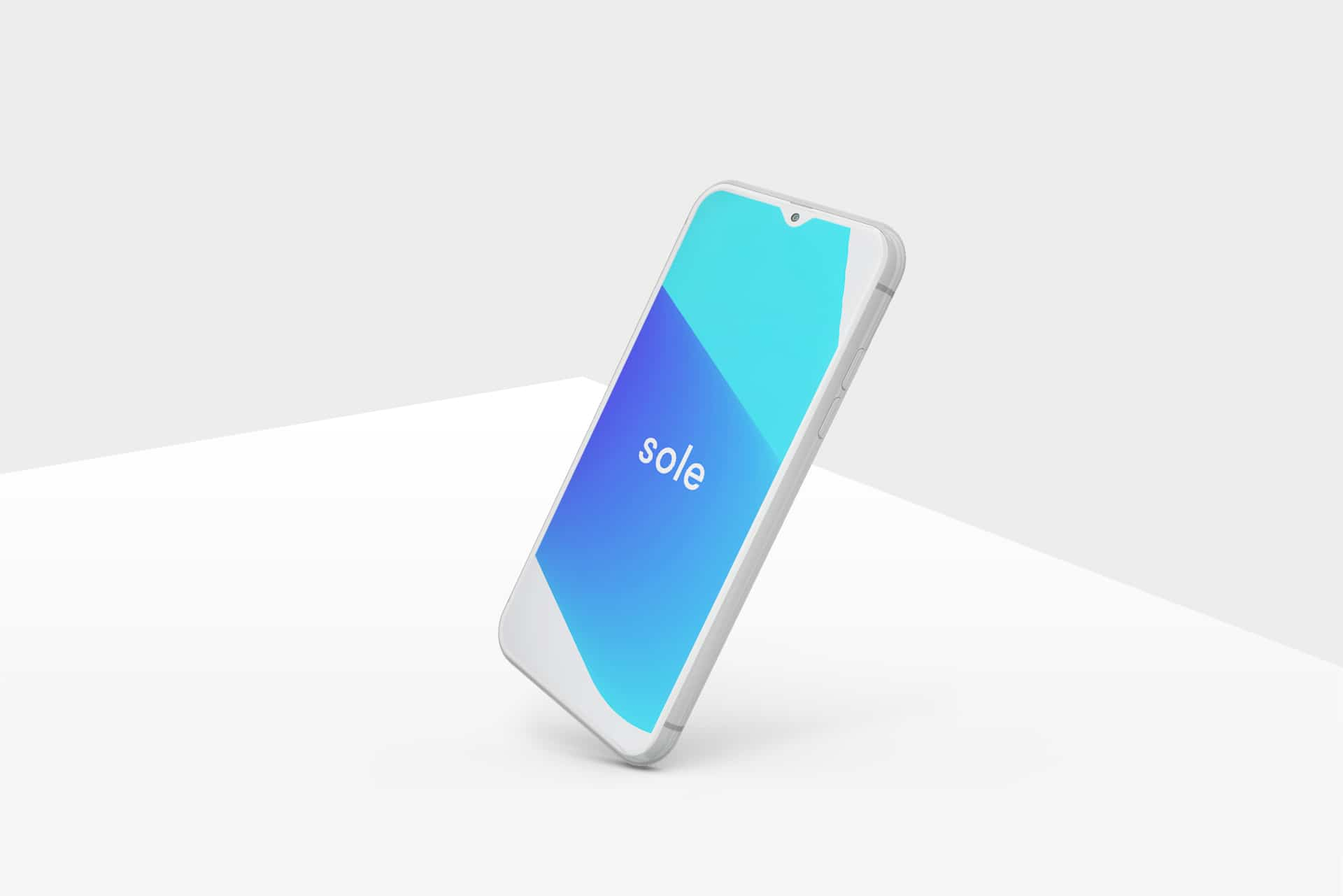 Sole Accounting App